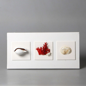 Quadro con corallo e conchiglie