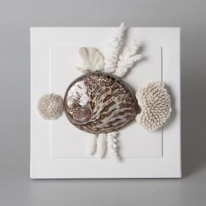 Quadro con conchiglia maculata e coralli