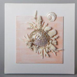 Quadro con conchiglie e coralli