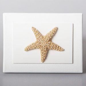 Quadretto con stella marina
