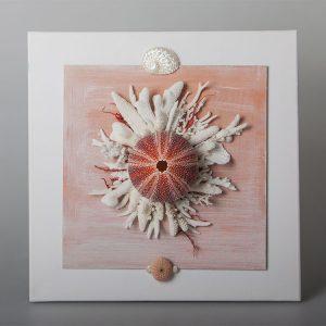 Quadro con riccio e coralli
