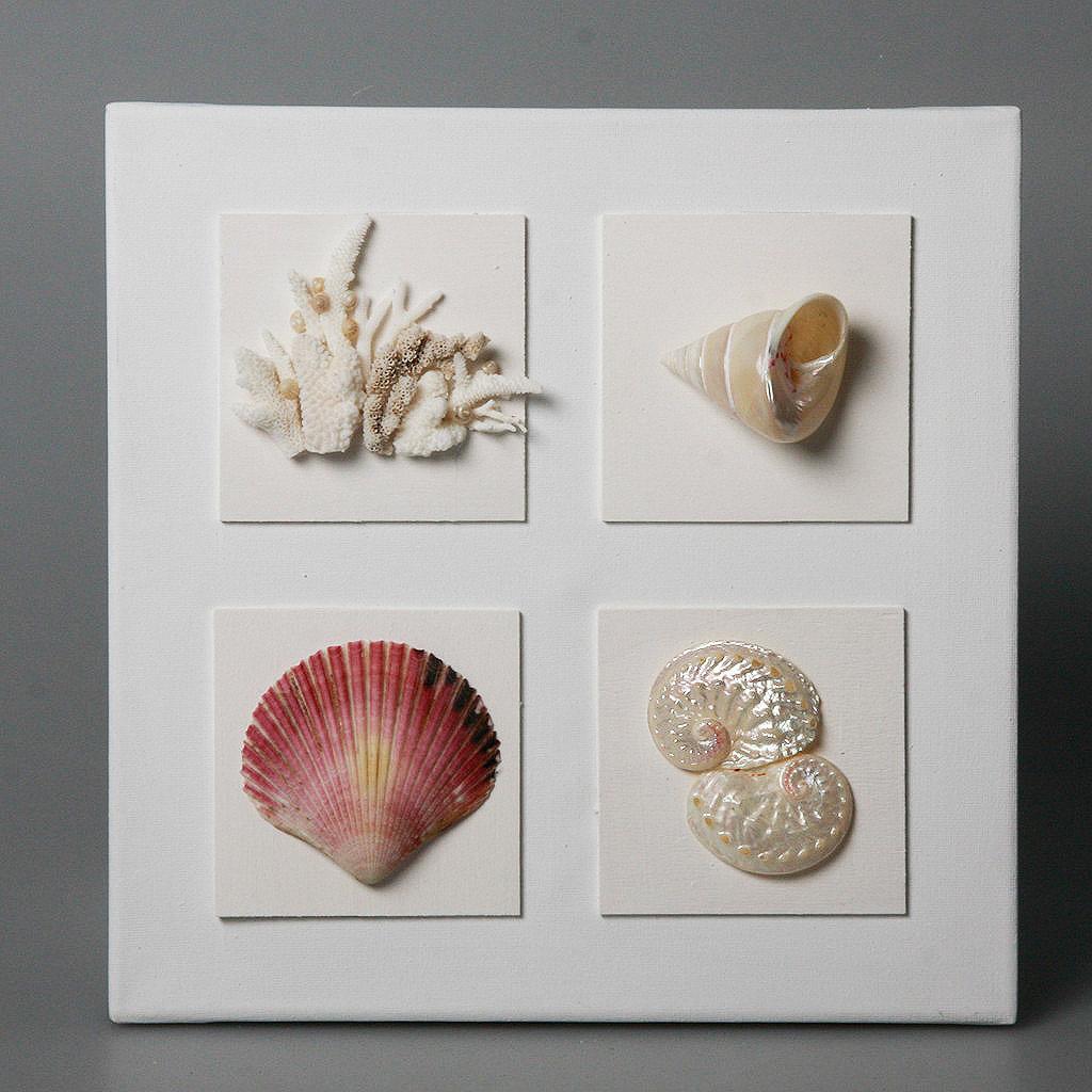 Quadri cristina vidolini creazioni in corallo e conchiglie for Quadri semplici